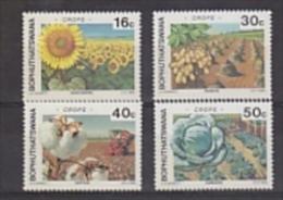 Bophuthatswana 1988 Agricultural Crops 4v ** Mnh (24103) - Bophuthatswana