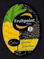 # PINEAPPLE FRUITPOINT SIZE 8 Fruit Tag Balise Etiqueta Anhanger Ananas Pina Costa Rica - Fruits & Vegetables