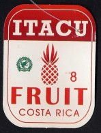 # PINEAPPLE ITACU Round Edges Calibre 8 Fruit Tag Balise Etiqueta Anhanger Ananas Pina Costa Rica - Fruits & Vegetables