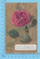 Postcard ( Red Roses ) Carte Postale Post Card 2 Scans - Fleurs
