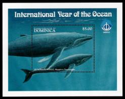 Dominica, 1998, International Year Of The Ocean 1998, IYO, UNESCO, Michel #Block 368, Scott #2087, MNH, Perforated So... - Dominique (1978-...)