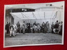 BELGIQUE CONCOURS AGRICOLE PHOTO BONHOMME A VERVIERS 18  X  13 - Lieux