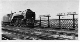 King Edward Railway Bridge River Tyne A1 Pacific - Railway
