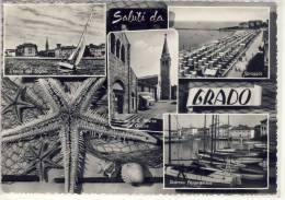 GRADO - Scorcio Panoramico, L'isola Del Sogno ..., Stella Di Mare, Starfisch, Conchiglia, Shellfisch - Gorizia