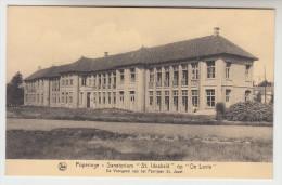 Poperinge, Poperinghe, Sanatorium St Idesbald Op De Lovie, De Voorgeven Van Het Paviljoen St Jozef (pk22487) - Poperinge