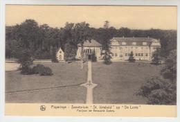 Poperinge, Poperinghe, Sanatorium St Idesbald op de Lovie, Paviljoen der eerwaarde zusters (pk22488)