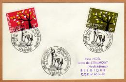Enveloppe Cover Brierf 1222 1223 Jumelage Avec Lens La Louvière - Lettres & Documents