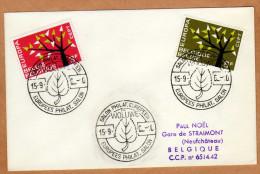 Enveloppe Cover Brierf 1222 1223 Salon Philat. Européen Europees Philat. Salon Woluwe - Belgio