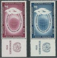 1956 NAZIONI UNITE ONU NEW YORK DIRITTI DELL'UOMO CON APPENDICE MNH ** - VA51 - Ungebraucht