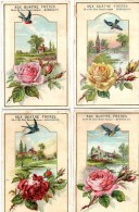 4 Chromos Format CP.Paysages.Fleurs.Oiseaux.Aux 4 Freres. A.Grassin Bordeaux. - Autres