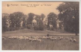 Poperinge, Poperinghe, Sanatorium St Idesbald op de Lovie,  Zicht uit het park  (pk22501)
