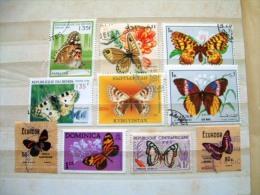 Butterflies Papillons - Papillons