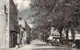 81 - Brassac - Avenue De Lacaune-les-Bains (automobile, Cafés) - Brassac