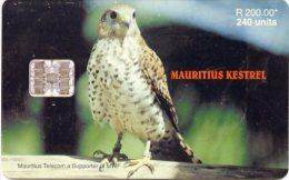 @+ Ile Maurice - Kestrel - 240 Units - 40 000 Ex - 05/2000 - Mauritius