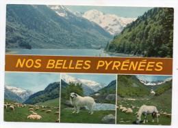 65 - Nos Belles Pyrénées - Frankreich
