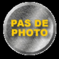 L'Illustration N° 4014 Du 7/02/1920 , Foch Académicien , Plébiscite Au Slesvig , Président En Belgique , - Boeken, Tijdschriften, Stripverhalen