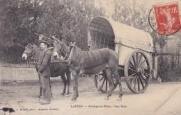 C P A---40---LANDES---attelage De Mules---lou Bros---voir 2 Scans - France