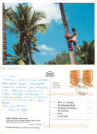 Toddy Tapper, Goa, India Postcard Posted 2007 Stamp - India
