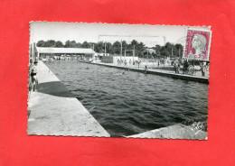 ANDERNOS  ARDT   1950    LA PISCINE EN PLEIN AIR   CIRC OUI EDIT - Andernos-les-Bains