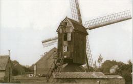 LINKHOUT Bij Lummen (Limburg) - Molen/moulin - Maxikaart Van De Verdwenen Molen Van Ceunen, Enkele Jaren Voor De Sloop - Lummen