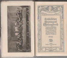 Buch Schlesisches Gesangbuch Schlesien Breslau Wroclaw Schweidnitz Swidnica Book Silesia Religion Georg Anna Lerch 1910 - Christentum