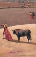 Corrida Bull Fight Senalando La Estocada