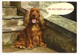 ON M'A POSÉ UN LAPIN - éd. La Cigogne N° PF 44 - Chien - Cani