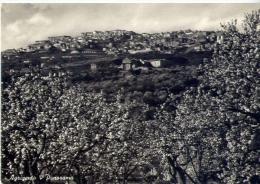 Agrigento - Panorama - Formato Grande Viaggiata - Agrigento