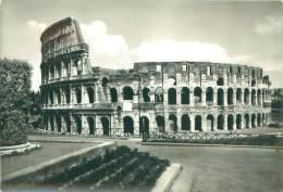 CPM - ROMA - Il Colosseo - Colisée