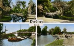 CPSM-DP 45-096-DORDIVES-VUES MULTIPLES-ECRITE. - Dordives