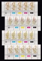 BOPHUTHATSWANA, 1981, MNH Controls Strips Of 5, Grasses, M 80-83 - Bophuthatswana