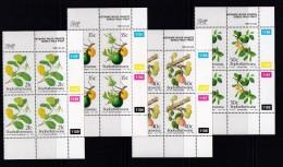 BOPHUTHATSWANA, 1991, MNH Controls Block Of 4, Wild Fruit, M 257-260 - Bophuthatswana