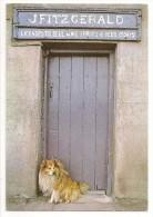 Ireland - Pub Door In Brandon Village, Co. Kerry - Ed. Real Ireland - Chien Dog - Kerry