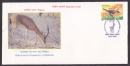 India  2005  Chinkara Deer Game  AJMER Special Cover  # 85681  Inde Indien - Game
