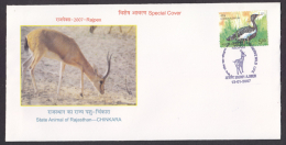 India  2005  Chinkara Deer Game  Bird Stamp AJMER Special Cover  # 85679  Inde Indien - Game
