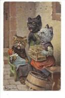 12837 -  Chat Habillés Le Concert Dans La Rue Poupée - Thiele, Arthur