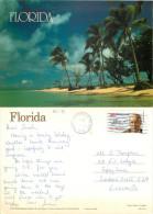Palm Trees, Florida, United States US Postcard Posted 1991 Stamp - Etats-Unis
