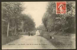 HESDIN La Forêt, Vue De La Route De Fruges (Herbay) Pas De Calais (62) - Hesdin