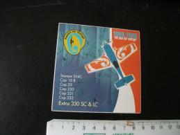 Autocollant Avion Equipe De Voltige 1968/2008 Stampe SV4C Cap 10 B 20 230 231 232 Extra 330 SC Et LC - Adesivi