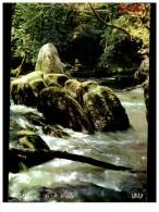 environs de saint junien les bords de la glane