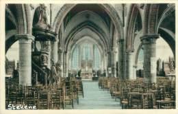 STEKENE - Binnenzicht Kerk - Stekene
