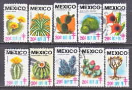 MEXICO  TB  LABELS  CACTI  (o) - Cactusses