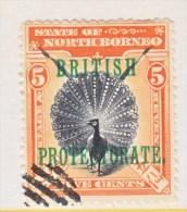 NORTH BORNEO  109  (o)    PEACOCK - North Borneo (...-1963)