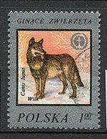 (cl 6 - P.39) Pologne Ob  N° 2334 (ref. Michel Au Dos) -  Loup  - - Usados