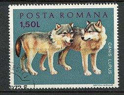 (cl 6 - P.39) Roumanie Ob  N° 2678 (ref. Michel Au Dos) -  Loup  - - 1948-.... Republiken
