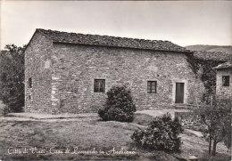 4136.   Città Di Vinci - Casa Di Leonardo In Anchiano - Timbro - 1965 - Italie