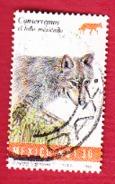 Loup - Mexiko
