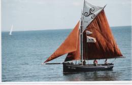 CPM -  Vieux Gréément La Belle-Iloise SAUZON  (56) Août 2009 - Belle Ile En Mer - (Voilier) - Belle Ile En Mer
