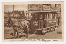 Cartolina Certosa Di Pavia - Tranvia Tram Cavalli Trasporto Stazione - Cavalier Maddalena - Pavia
