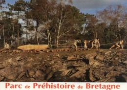 MALANSAC    PARC PREHISTORIQUE DE BRETAGNE    DEPT 56 MORBIHAN - France